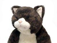 眠り金之助 Sleeping Kinnosuke