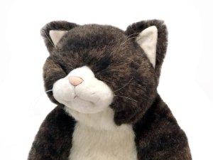 画像1: 眠り金之助 Sleeping Kinnosuke